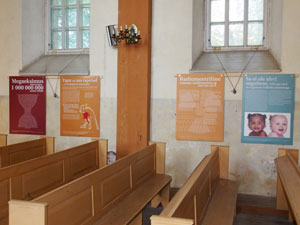 Creation-posters-in-church