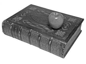 11844-E-bible-apple