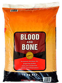 blood-bone