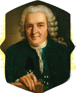 Carl Linnaeus - creation com