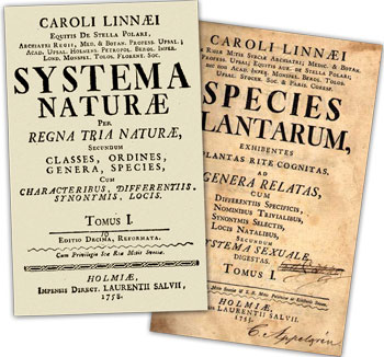 Species-plantarum