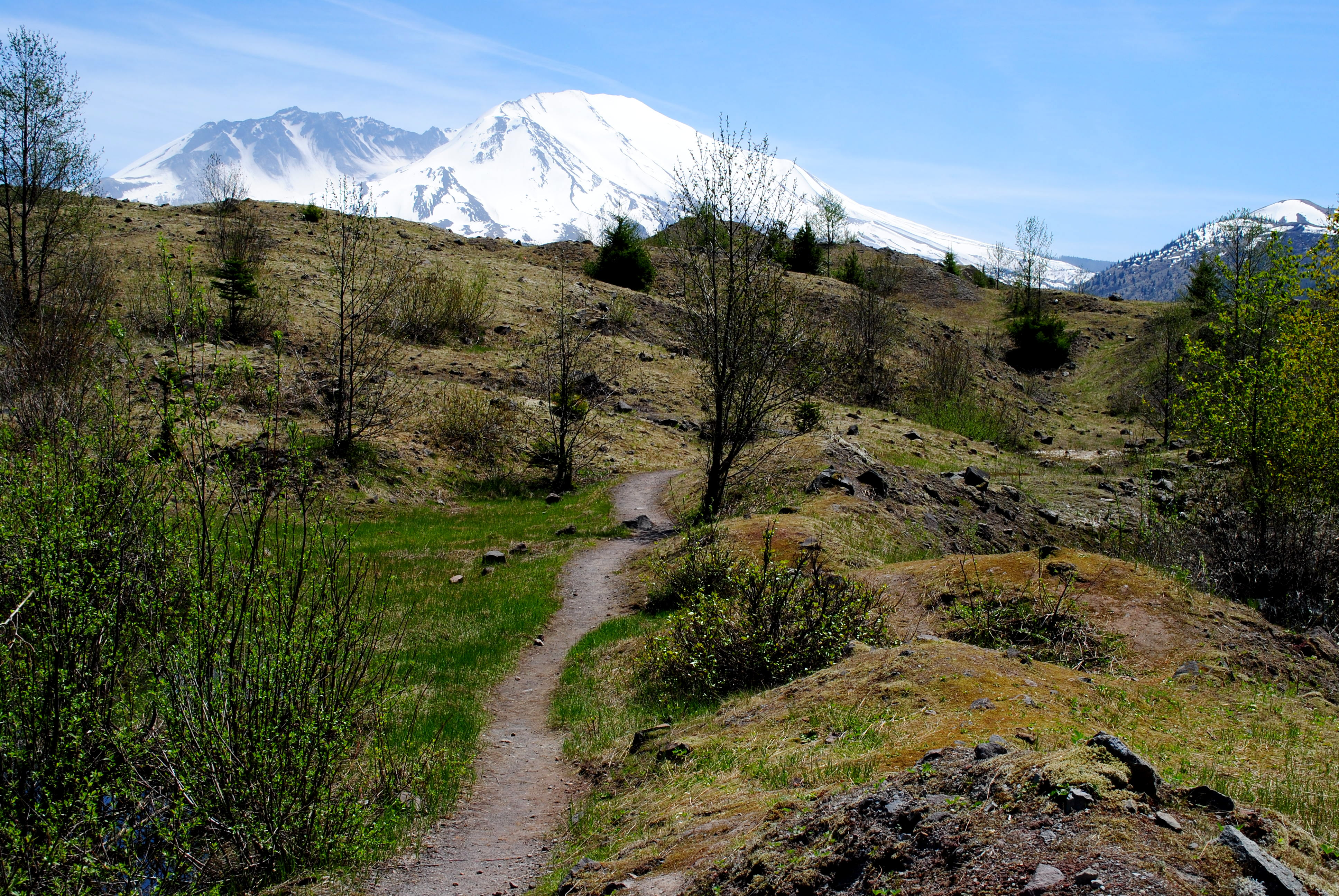 11976-hummocks-trail-flickr-ethan-douglass