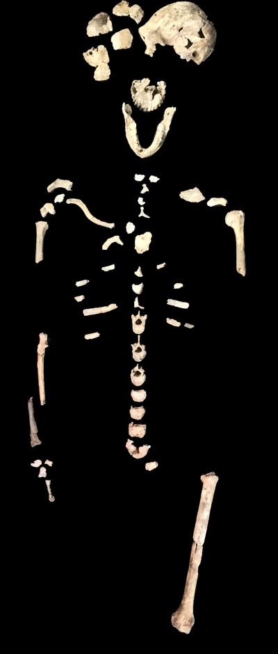 Figure_1_LES1_skeleton_Homo_naledi_Lesedi_Chamber_John_Hawks_Wits_University
