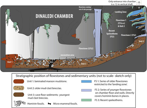 dinaledi-chamber