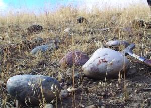 eah-ch5-boulders