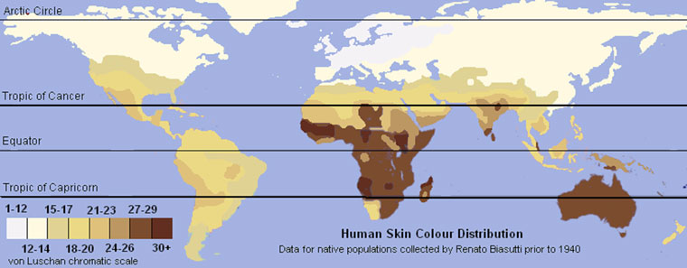 human-skin-colour-distribution