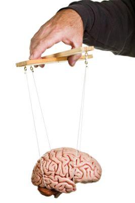 puppet-brain