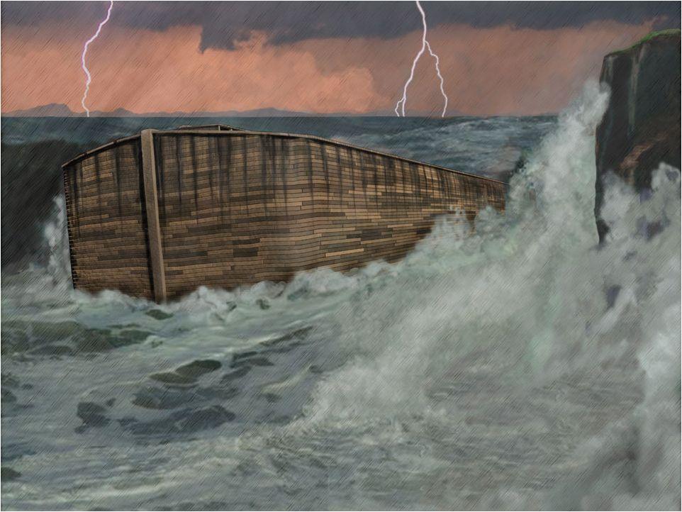 Noahs Flood the big picture - creation.com