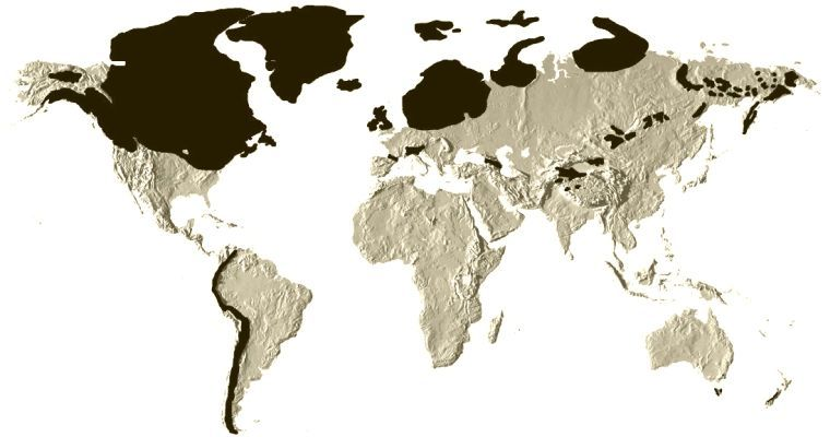 ice-age-extent-1