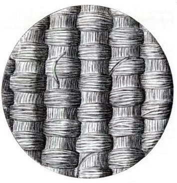 microscopic-depiction-of-silk