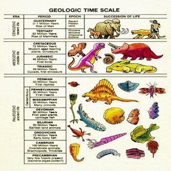 地質学の時間