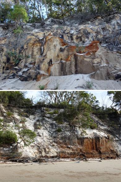 Frase-Island-Podzol-Soil-Profile