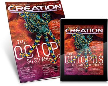 Creation-mag