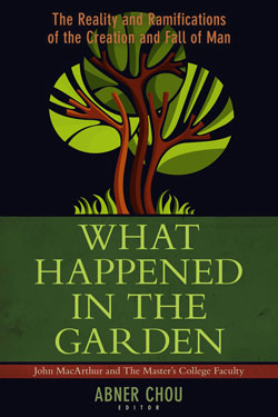 what-happened-in-the-garden