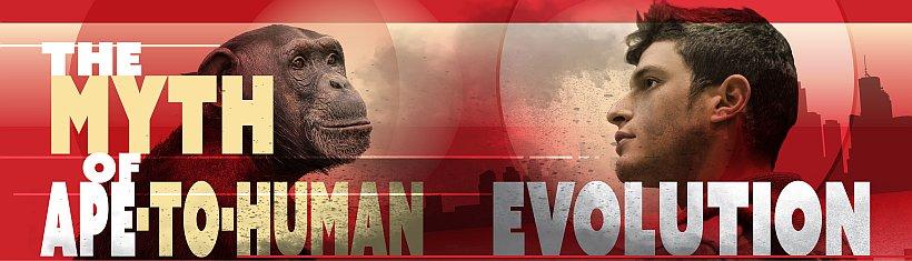 ape-to-human-myth