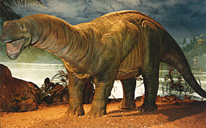 Dino full lenght