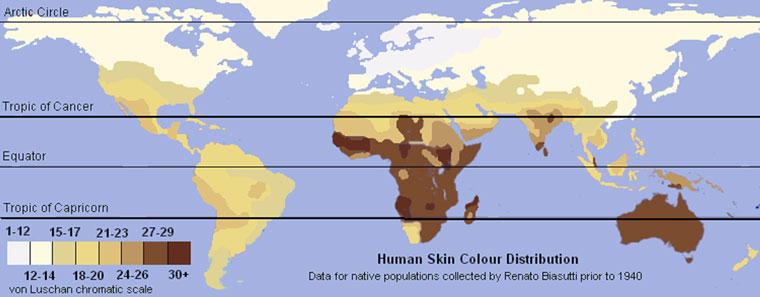 human-skin-colour-distribution