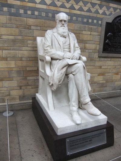 Darwin-statue
