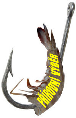Bait hook with prawn