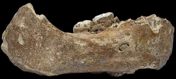 Xiahe-Denisova-jawbone