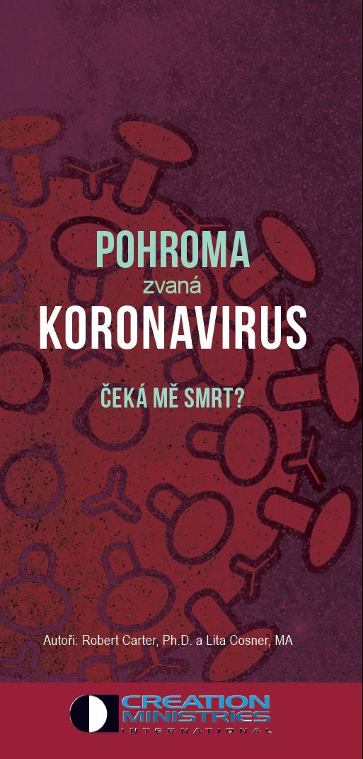 Pohroma zvaná koronavirus
