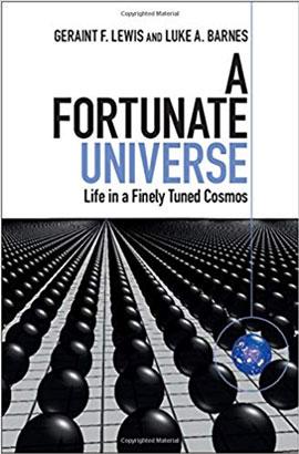 A-fortunate-universe