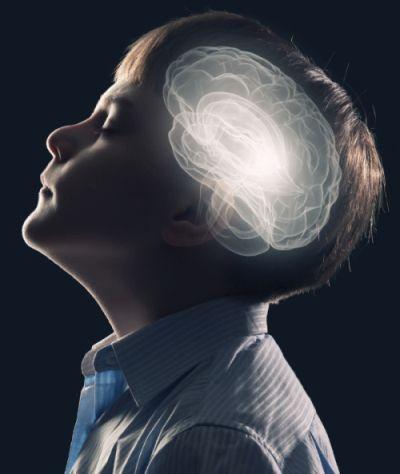 boy-brain