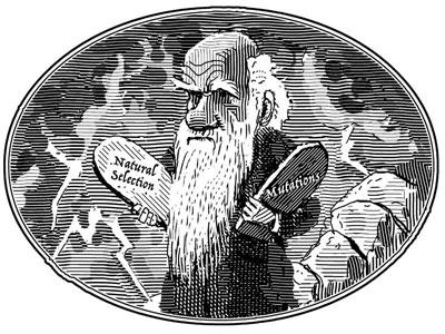 two-commandments-evolution