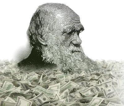 darwin-money