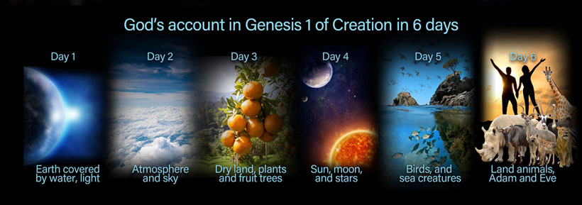 Creation-in-6-days
