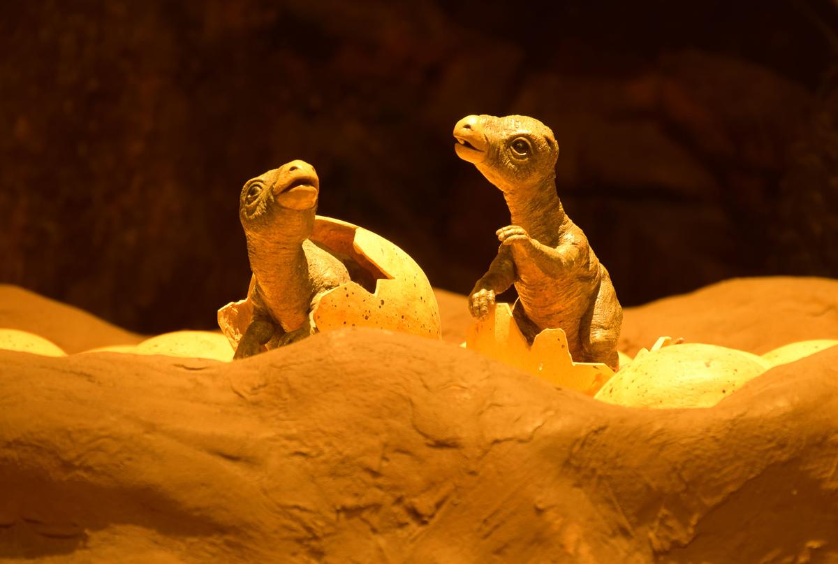 baby-dinosaurs