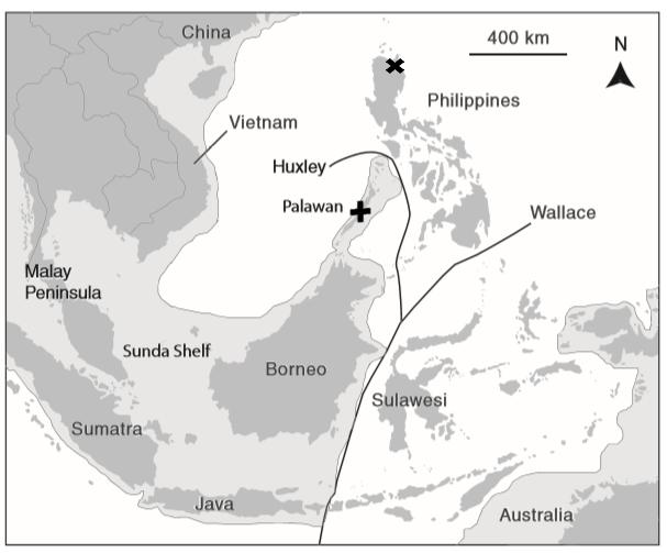 Map-of-Southeast-Asia@607w