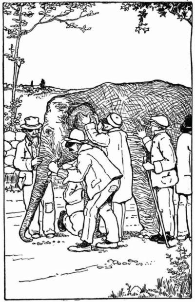 Blind-men-and-elephant