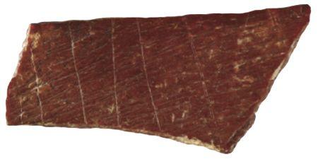 engraved-bone