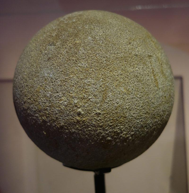 Sauropod-egg