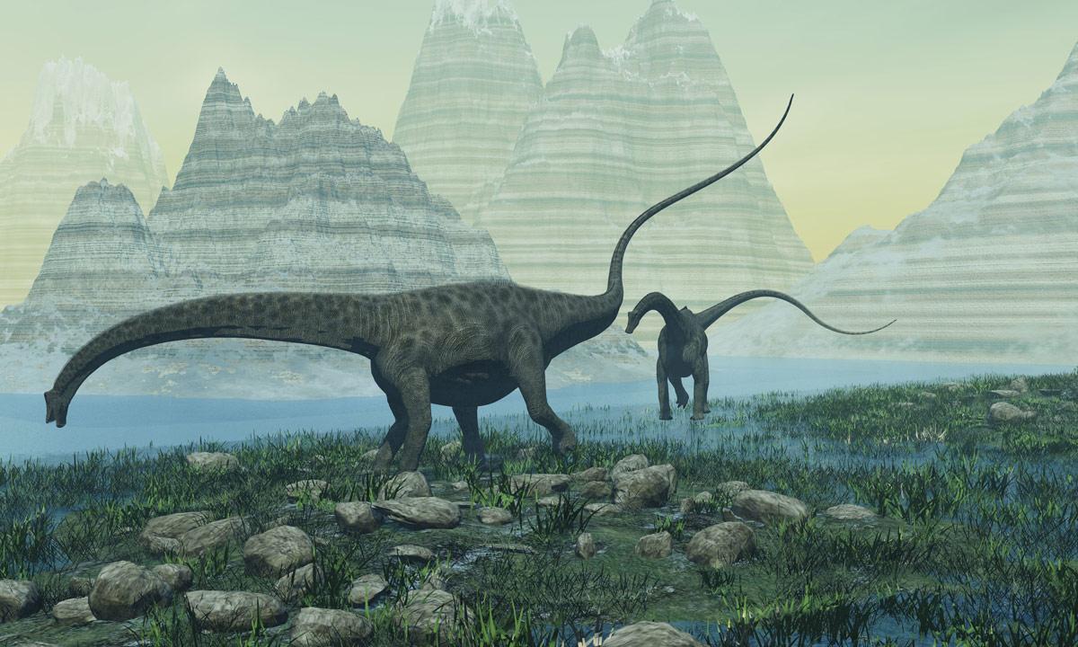 Diplodocus-carnegii