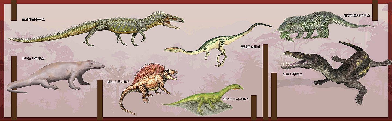 14205-dragons