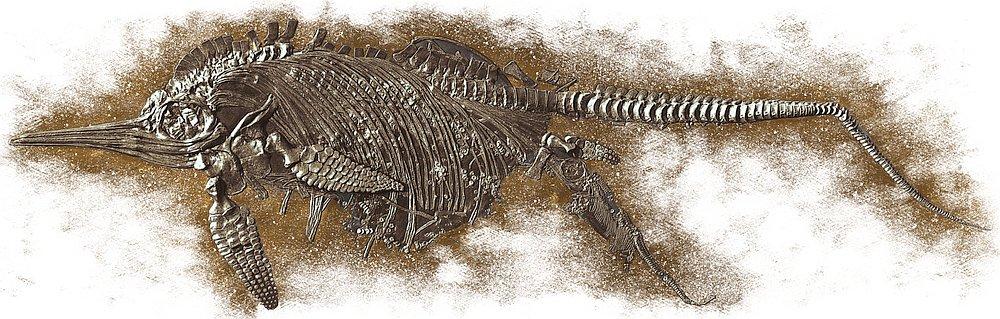 14235-ichthyosaur
