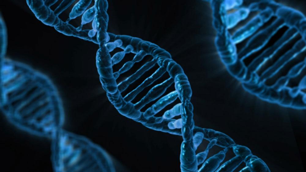 Deoxyribonucleic-acid