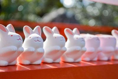 rubber-rabbits