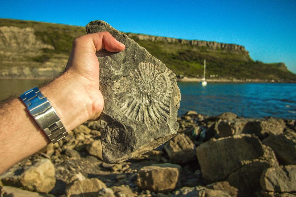 Jurassic-Coast-finding-fossil