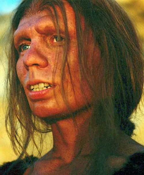 neandertal-face