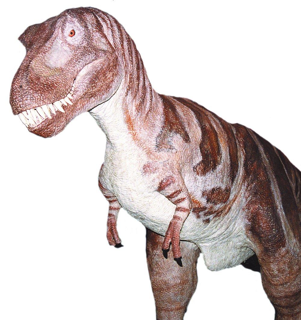 14520-dinosaur