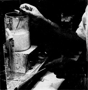 14736-opal-brewing