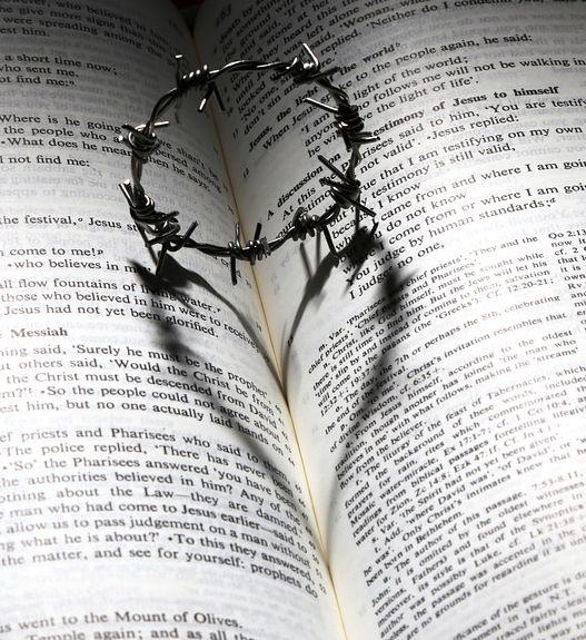 bible-thorns