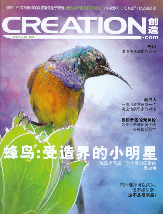Creation-Chinese-Simplified-2017-1
