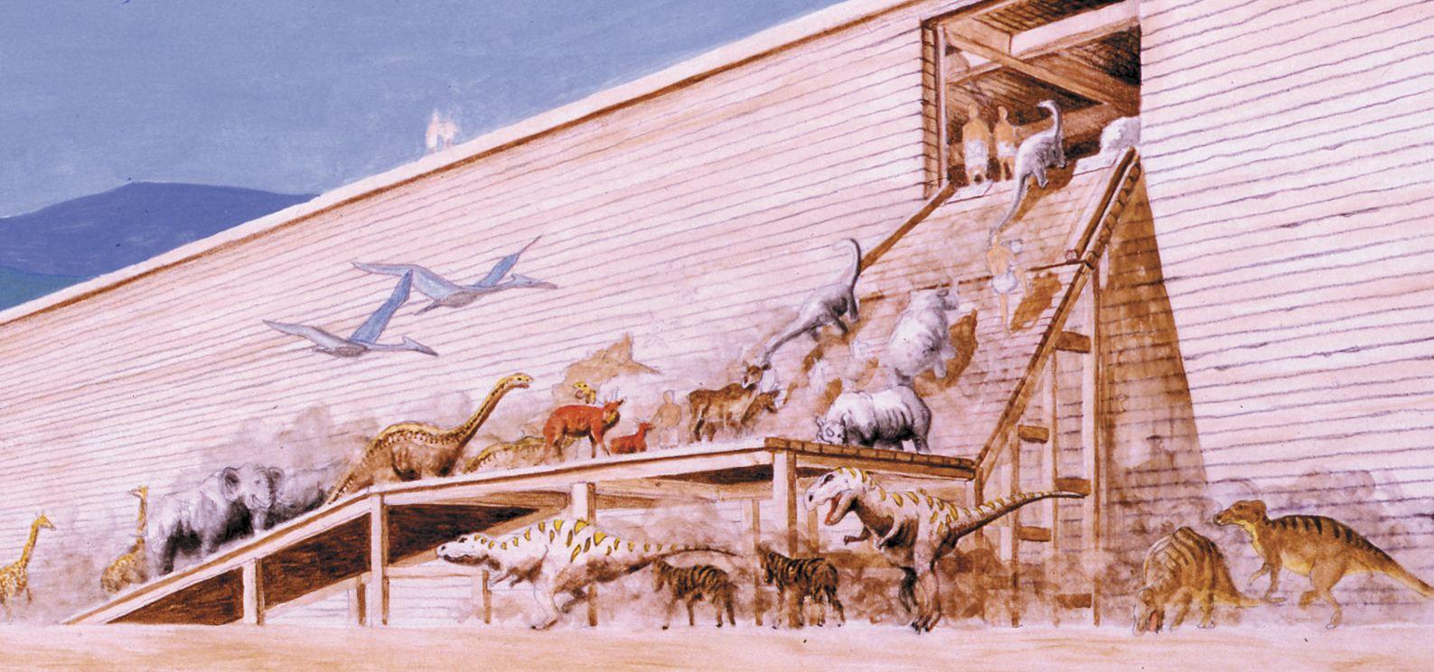 ark-boarding-2