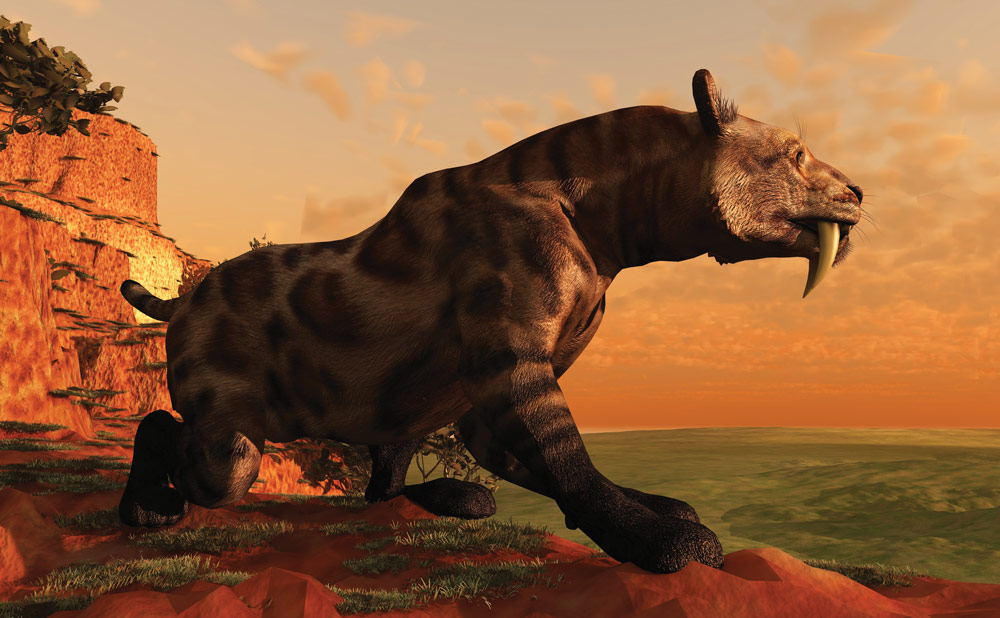 Sabre-toothed-tiger