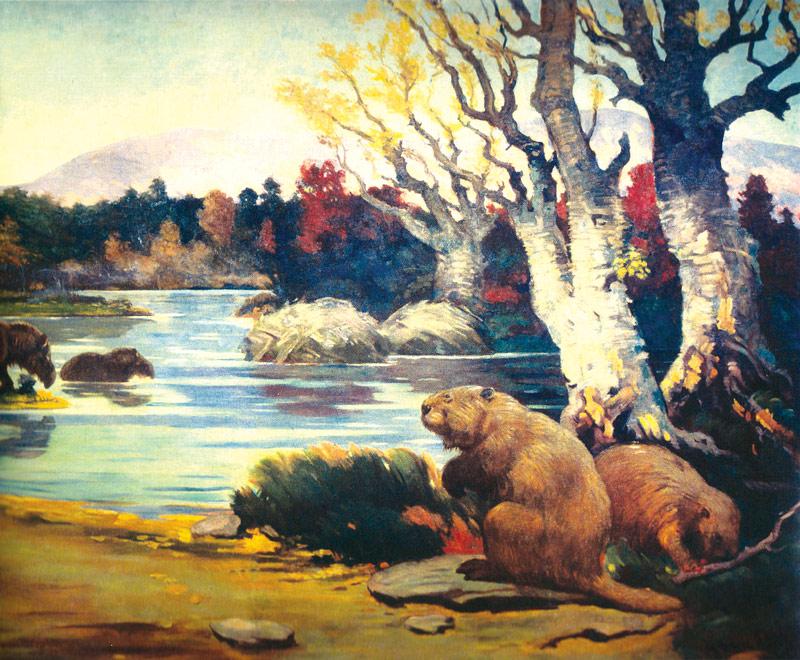 giant-beaver
