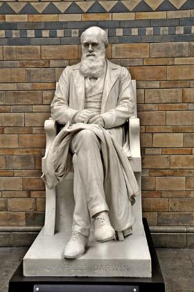 Charles-Darwin-statue